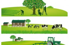 gazdasági kilátások, mezőgazdaság, sertéspestis, uniós források