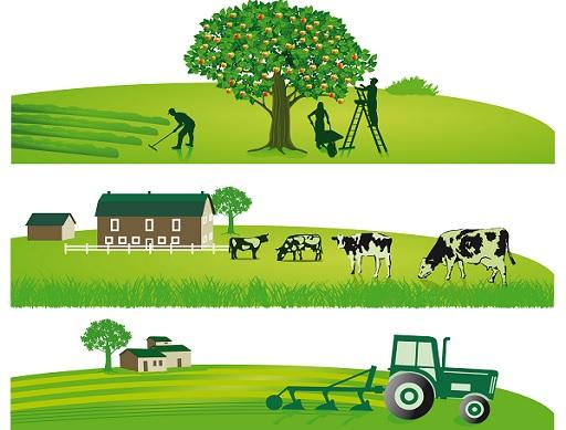 mezőgazdaság grafika