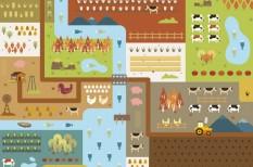 állattenyésztés, gabona, gabonatermesztés, globális felmelegedés, ksh, mezőgazdaság, szélsőséges időjárás