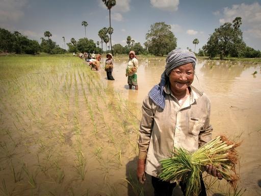 vietnam_wikipedia