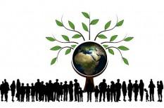 befektetés, intézményes befektető, jpmorgan, környezettudatos, michael bloomberg, Moody's, öko, tőzsdei cég, világbank, zöld gazdaság