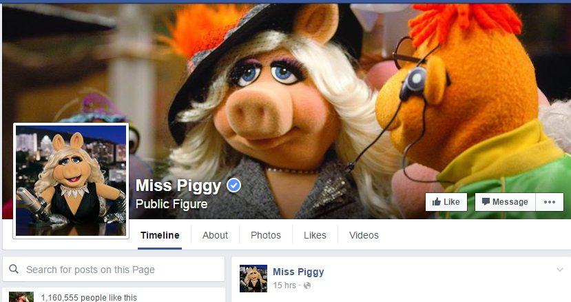 Talán Miss Piggy-vel is együtt utazhatunk... (fotó: FB)
