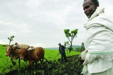 afrika, agrárium, bill gates, felzárkóztatás, mobil, okostelefon, szegénység