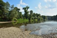 a víz világnapja, ökológia