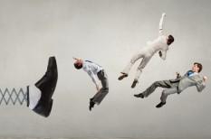 hatékony cégvezetés, kiválasztás, szervezet és vezetés