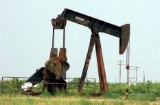 gazdasági kilátások, kőolaj, olajkitermelés, üzleti kockázatok