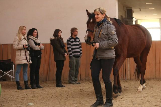 lovas tréning életkép