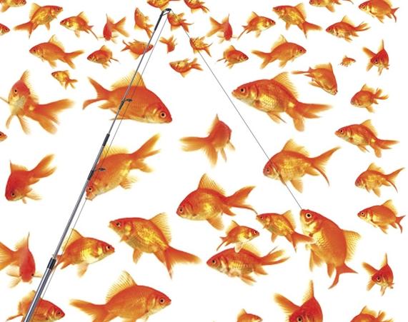 sok aranyhal közül egy horogra akad