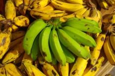 bolt, celsius-fok, élelmiszer, érlelés, etilén, fogyasztás, gyümölcs, hőmérséklet, innováció, szállítás, találmány, tárolás, zöldség