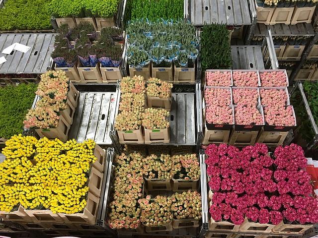 adóellenőrzést kapnak a virágosok