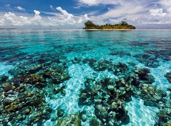 A Nagy Korallzátonyt