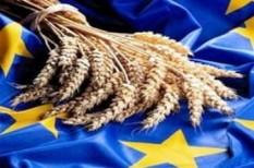 agrárkamara, agrártámogatás, kap, közös agrárpolitika, V4