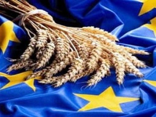 búzakalász uniós zászlón