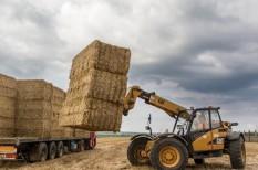 agrárium, biomassza, hulladék csökkentés