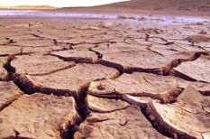 egészség, éghajlatváltozás, felmelegedés, globális felmelegedés, hőmérséklet, klímaváltozás, melegrekord, szélsőséges időjárás
