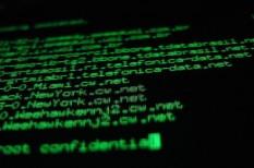 deloitte, hacker, hekker, internet, kiberbiztonság, kiberbűnözés, munkaerőhiány, támadás, világháló
