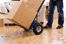 bútor, lakás, lakberendezés, lakótárs, otthon