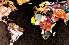 egészséges életmód, fenntartható fejlődés, fenntartható fogyasztás, környezetvédelem, tudatos fogyasztás