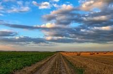 fenntartható gazdálkodás, globális felmelegedés, mezőgazdaság, párizsi klímaegyezmény, uniós szabályozás