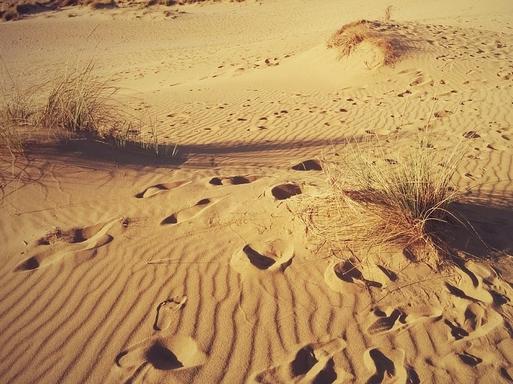 sivatag lábnyomokkal