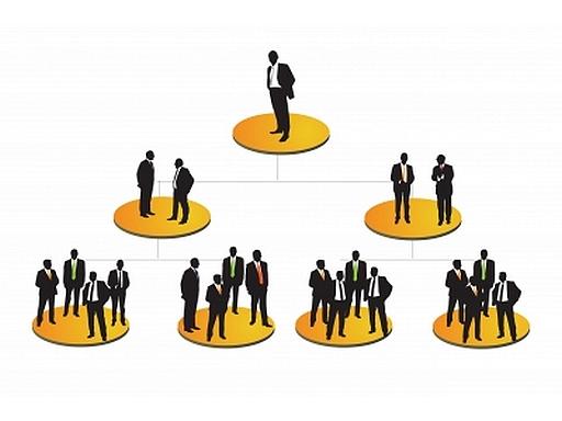 szervezeti ábra grafikus rajza