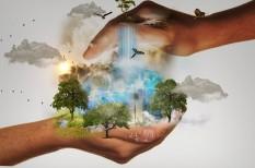 donald trump, éghajlatváltozás, karbonsemleges, klímapolitikai, klímaváltozás, kompromisszum, párizsi klímaegyezmény, profitérdek, szegény ország, üzleti szektor, zöld gazdaság