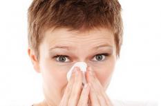 allergia, egészségügy, fenntarthatóság, globális felmelegedés, klímaváltozás, pollen
