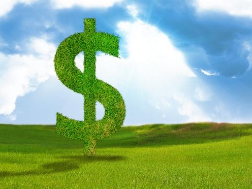 zöld fű dollárjel