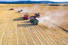 agrárinformatika, informatika, képzés, megfosz, mezőgazdaság, mezőgépész
