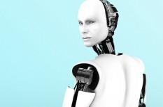 alapjövedelem, jövő, mesterséges intelligencia, munkanélküliség, robot