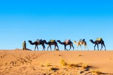 arab, befektetés, külföldi befektető, működőtőke, szállodaipar