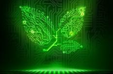 energiapiac, fogyasztás, környezet, zöld vállalat