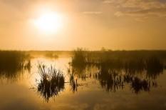 környezetvédelem, nemzeti park, természetvédelem, világörökség