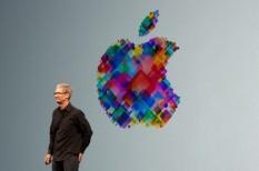 apple, forgalom, iphone, nyereség, tim cook, visszaesés
