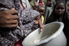 afrika, aszály, éhezés, éhínség, élelmezési világnap, élelmiszer, ensz, klímaváltozás, mélyszegénység, segély, szegénység