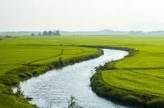 agrárium, fao, klímaváltozás, környezetvédelem, mezőgazdaság, növény termesztés, vietnam, vízgazdálkodás