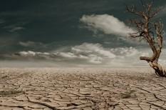 föld napja, klímaváltozás, klmíavédelem, környezetbarát termék, zöld marketing
