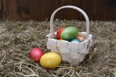 csokoládé, édesség, édességipar, élelmiszer-kereskedelem, húsvét
