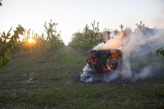 Nagyrécse, 2017. április 21. Füstöléssel védekeznek a fagy ellen egy gyümölcsösben, a Zala megyei Nagyrécsénél 2017. április 21-én. A településen hajnalban -2 Celsius-fokot mértek.