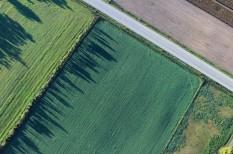agrárgazdaság, földművelés, gazdák, mezőgazdaság, mezsgye, növénytermesztés