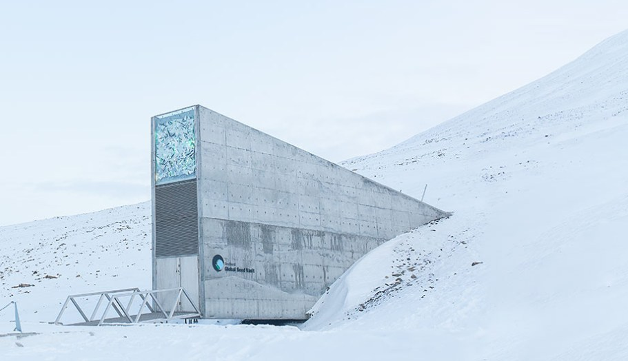 Első ránézésre úgy néz ki, mint bármilyen egyszerű bunkerbejárat (fotó: croptrust.org)