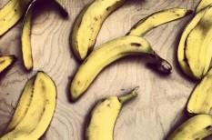 banán, élelmiszerpazarlás, nagy-britannia, pazarlás