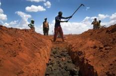 éhezés, élelmiszertermelés, fao, fenntartható fejlődés, fenntartható mezőgazdaság, hatékonyságnövelés