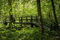 családbarát, nemzeti parkok, ökobarát, ökolétesítmény, természetvédelem, turisztika