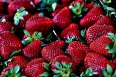csalás, gyümölcs, kereskedelem, piac
