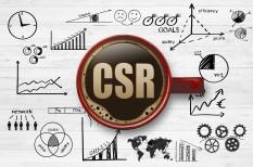 adomány, csr, marketing, menedzsment, pr, társadalmi felelősségvállalás, vállalatok társadalmi felelősségvállalása