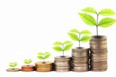 árbevétel, beruházás, hitel, hitellehetőségek, kkv, lízing, piacesprofit, piacesprofit.hu, uniós forrás