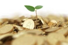 beruházások, gdp, gki, közmunka, magyar gazdaság, mezőgazdaság, munkanélküliség