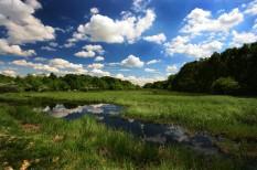 dráva, duna, élővilág, európa élővilága, környezetvédelem, mura