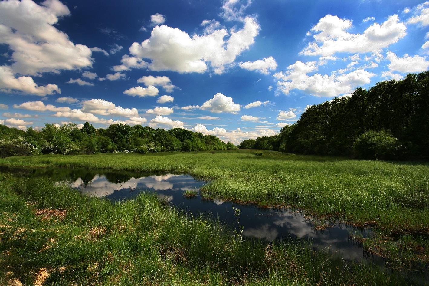 A 176.635 hektár területet felölelő Bačko Podunavlje bioszféra-rezervátum öt települést, valamint négy tájvédelmi területet foglal magába. (Kép: Jaroslav Pap)